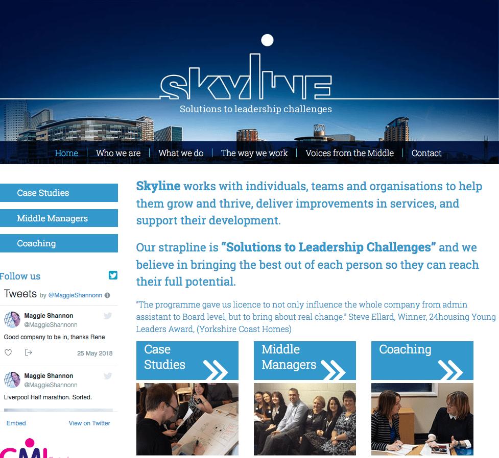 Skyline website build by Shake It Up Creative